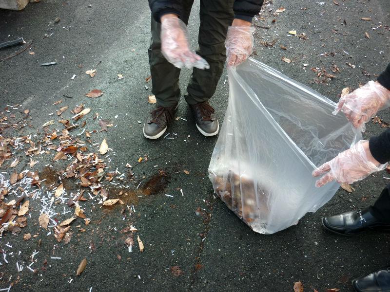 周辺地区のゴミ拾い